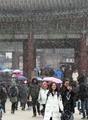 Nieve en el Palacio Gyeongbok