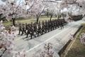 Ejercicios de disciplina de los soldados en primavera