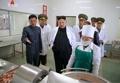 Kim Jong-un at pig farm