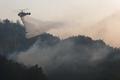 Se incendia un bosque en Gangneung