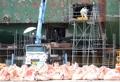 Continúan los procesos de investigación del ferri Sewol