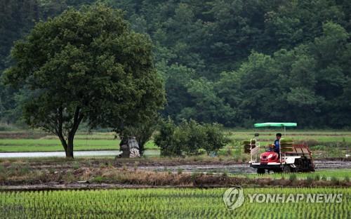 광주·전남 4∼6월 강수량 평년대비 44%