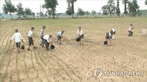 """""""대북제재와 최악 가뭄으로 북한 주민 생활고 가중"""""""