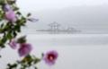 Pavillon sur le lac de Gyeongpo