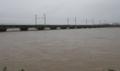 大雨で忠北線運行中止