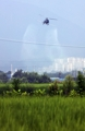 Crop duster sprays pesticide over rice paddy