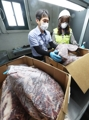 Quarantine operations on imported U.S. beef strengthened