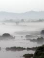 Río entre la niebla