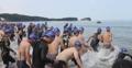 Natation en mer