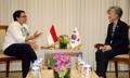 Réunion ministérielle Corée-Indonésie