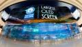Plus grand écran OLED
