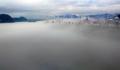Brouillard onirique