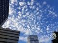 Ciel bleu à Séoul