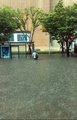Calles inundadas en Busan