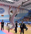 Campeonato Mundial de Taekwondo en Pyongyang