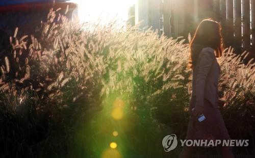 [주말 N 여행] 수도권: 서울∼경기 잇는 정조대왕 능행차