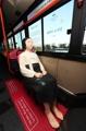 ソウル近郊の路線バスに「少女像」