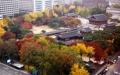 秋色に染まる徳寿宮
