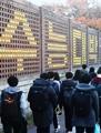 Actividades ante el examen de acceso a la universidad