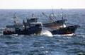 한중 어업협상 타결…어선 입어규모 1천500척으로 감축