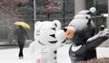 أول يوم لتساقط الثلوج في في مدينة سيجونغ