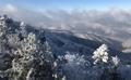 平昌の雪景色