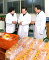 N. Korea's Choe Ryong-hae inspects foodstuff factory