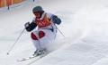 Skieur acrobatique français