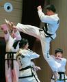 El equipo norcoreano de demostración de taekwondo