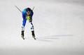 Skieur de fond Park Je-un