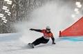 Corea del Sur gana la medalla de plata en eslalon gigante paralelo