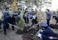N. Korea's tree-planting day