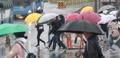 تساقط الأمطار في سيئول