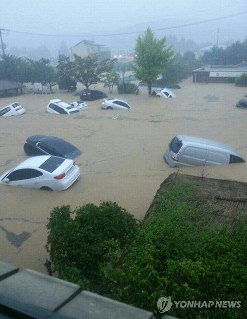 浸水した道路で水に流される車両=25日、釜山(聯合ニュース)