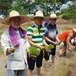 북한 어린이 돕는 모내기