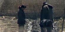 국내 입국 탈북자 수 3년간 절반 급감