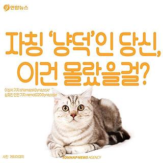 [카드뉴스] 고양이에 대해 모르고 있던 사실 '7가지'