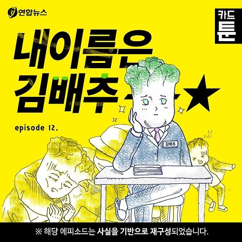 [카드툰] 내이름은 김배추 - 와이콜센터