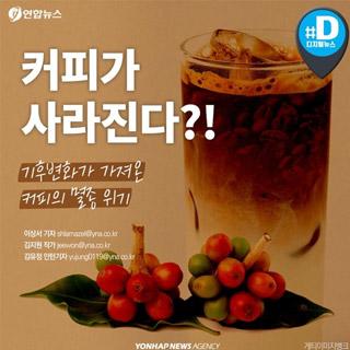 [카드뉴스] 지구 더워진다…커피 멸종 위기