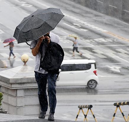 비가 야속해