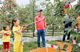 '레드 페스티벌'… 장수 한우랑 사과랑 축제 개막