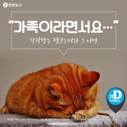 """[카드뉴스] """"가족이라면서요?""""…유기동물 9만마리 육박"""