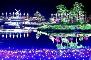 태안 안면도 꽂지 해안공원 '코리아플라워파크' 22일 개장