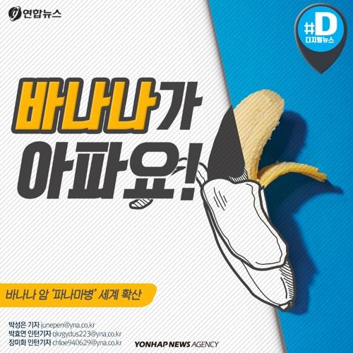"""[카드뉴스] """"바나나가 지구에서 사라진대요"""""""