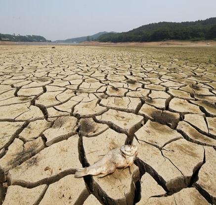 계속 되는 가뭄에 저수지 바닥도 '쩍쩍'