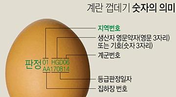 계란 생산자 정보 '난각코드'도 엉터리…없거나 틀려