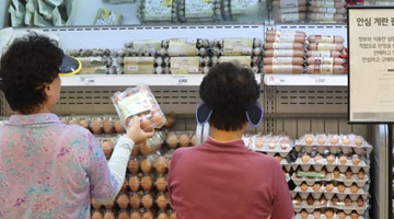 살충제 계란 여파…계란 판매 40% 줄고 제빵 매출 20% 감소