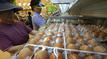 정부 '계란 난각코드' 관리 엉망…생산농장 점검기록 '0'