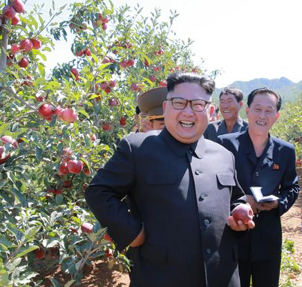 """트럼프 보란듯…北 김정은, 과수원 둘러보며 """"어깨춤 절로 난다"""""""