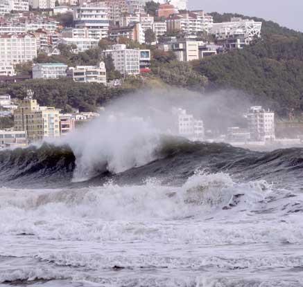 순간 28.7m 강풍…태풍 '란' 북상에 동·남해안 강풍